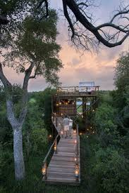 file tree house jpg tree house hotel in south africa lion sands tinyeleti treehouse