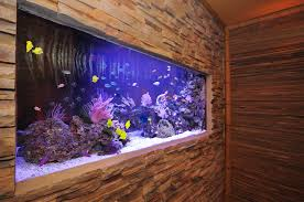 wall aquarium contemporary interior design and feature walls on
