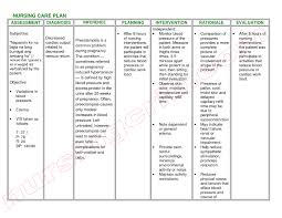 example of nursing care plan u2013 khafre inside nursing care plan