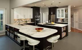 Ferguson Bath Kitchen Lighting Washington Dc S Best Kitchen Remodeling Resources Ferguson Bath