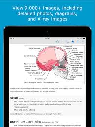 Rug Medical Term Nursing Dictionary Medical And Drug Definitions On The App Store