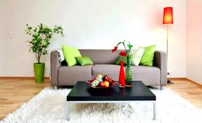 Living Room Decorating Ideas Apartment Gallery Of Ideas Simple Decoration Ideas For Living Room On