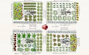 garden layout ideas gardening ideas