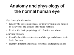 Eye Anatomy And Physiology Diabetic Retinopathy Screening Nsf Based Training Ppt Video