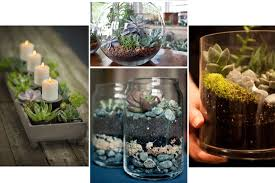 How To Make A Succulent Planter by It U0027s Three Thirty Planting Succulents