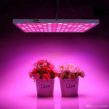 led lights for indoor plants 45w led grow light bulbs full spectrum plant growing ls for
