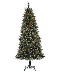 snow kissed pine tree tree classics