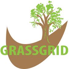 stella green sg80 60 square metres green grassgrid