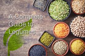 legumes cuisine a complete guide to legumes modern vegan wellness