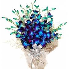 blue orchids send flowers to india orchids flowers to india flowers delivery