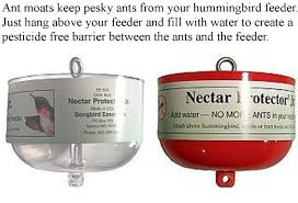 Jewel Box Window Hummingbird Feeder Wild Birds Unlimited Ant Moats For Hummingbird Feeders