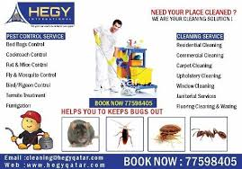 Bed Bug Cleaning Services Pest Control Bed Bug Cockroach Rodent Control Qatar Living