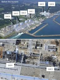 after five years what is the cost of fukushima