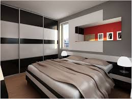 Cool College House Ideas by Mens Apartment Essentials Male Decorating Ideas Studio For Guys