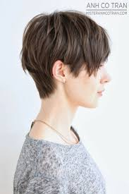 how to cut a short ladies shag neckline 16 great short shaggy hairstyles for women short shaggy hairstyles