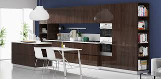Kitchen Rta Cabinets Modern Rta Cabinets U2013 1 Online Seller Of Modern Kitchen Cabinets