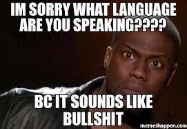 Bullshit Meme - im sorry what language are you speaking bc it sounds like