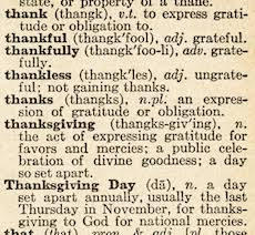 beyond maize thanksgiving vocab for grown ups excerpts
