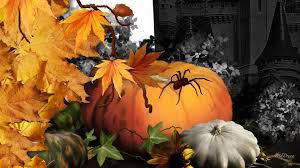 hd halloween wallpapers 1080p nature halloween haunt autumn spider maple harvest squash fall