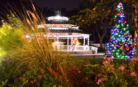 tree lighting kicks off holiday special events season tonight