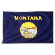Ohios State Flag Ohio State University Flags U0026 Flag Poles Outdoor Decor The
