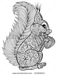 nut coloring page coloring pages stock images royalty free images u0026 vectors