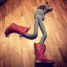 Pantyhose Meme - cats wearing tights is your new favorite thing on the internet e