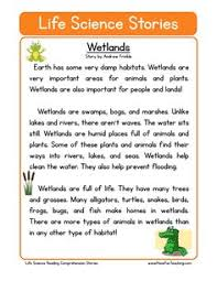 insects 4th grade reading pinterest reading comprehension