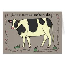 cow greeting cards moo greeting cards zazzle
