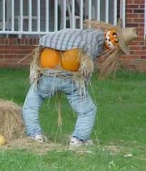 Funny Halloween Pumpkin Designs - pumpkins halloween pinterest pumpkin carving pumpkin