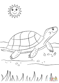 cartoon turtle coloring page free printable coloring pages