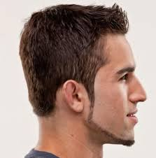 beard grooming double chin double chin beard style design short