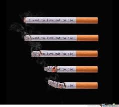 Anti Smoking Meme - 37 best stop smoking images on pinterest funny stuff ha ha and