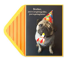 birthday pug with hat for brother family birthday cards papyrus