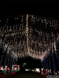 garvan gardens christmas lights 2016 christmas garvan gardens christmas lights elegant the 20 best