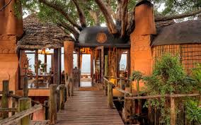 the 2017 world u0027s best safari lodges in africa travel leisure