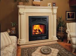 wood burning fireplace glass doors binhminh decoration