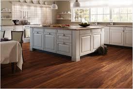 kitchen cabinets to go houston imanisr com