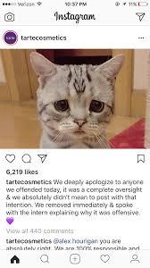 We Re Sorry Meme - why i m voting no on tarte anti haul 6 sharmtoaster