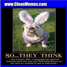 Surprise Meme - easter surprise clean memes the best the most online