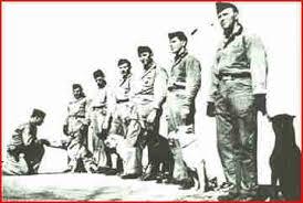 k 9 history ww ii pto usmc devil dogs