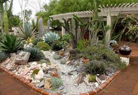Outdoor Garden Design Ideas Outdoor Garden Design Ideas Mini Indoor Cactus Cactus Display