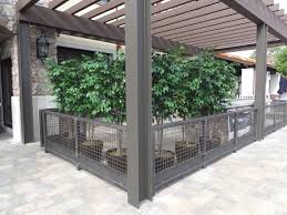 Potted Patio Trees by Tree Rental For Weddings Events Artificial Plants Faux Trees