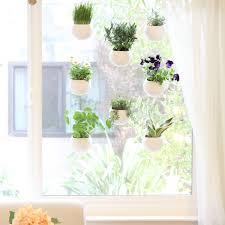 Different Types Of Japanese Gardens - indoor garden g s kielians blog i am growing a bunch of different