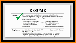 resume professional summary exles professional summary exles endowed for resume sle