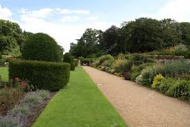 Yew Topiary - garden path with yew topiary sculptured urn u0026 a herbaceous