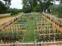 vegetable garden design picture u2013 latest hd pictures images and
