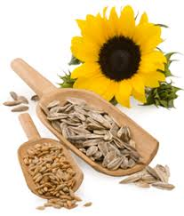 sunflower seeds let the sun shine in healthyliving from nature