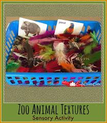 bored at home create your own zoo 33 best preschool zoo animals images on pinterest crafts for