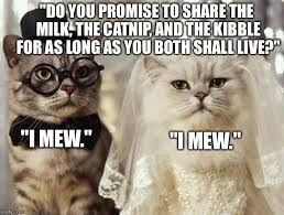 Meme Marriage Proposal - wedding proposal meme 100 images 25 best memes about marriage